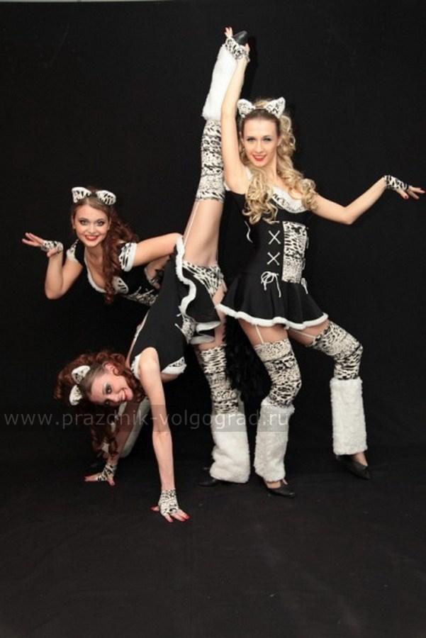 танцевально эротический коллектив